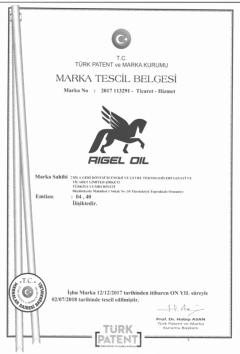 rigel-marka-tescil-695x1024